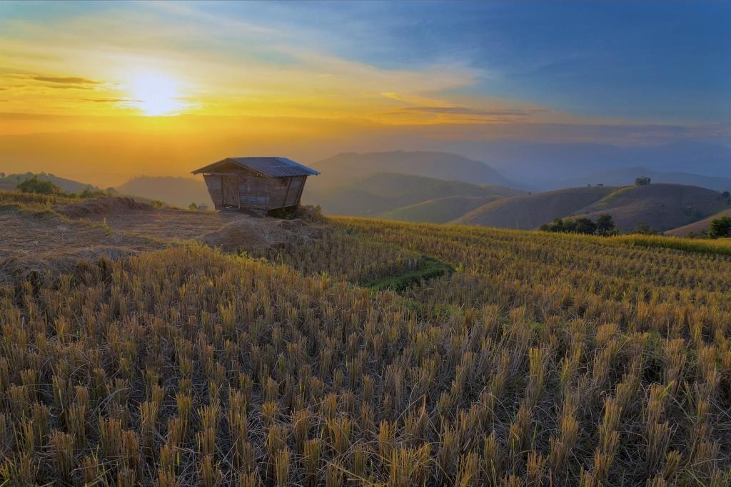 شهرهای تایلند - چیانگ مای
