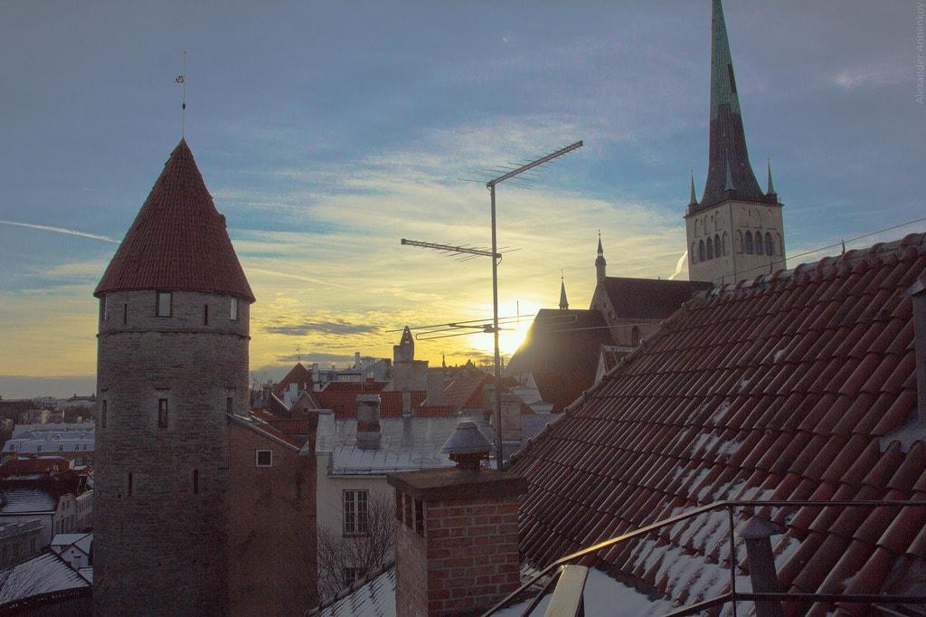 سفر به استونی