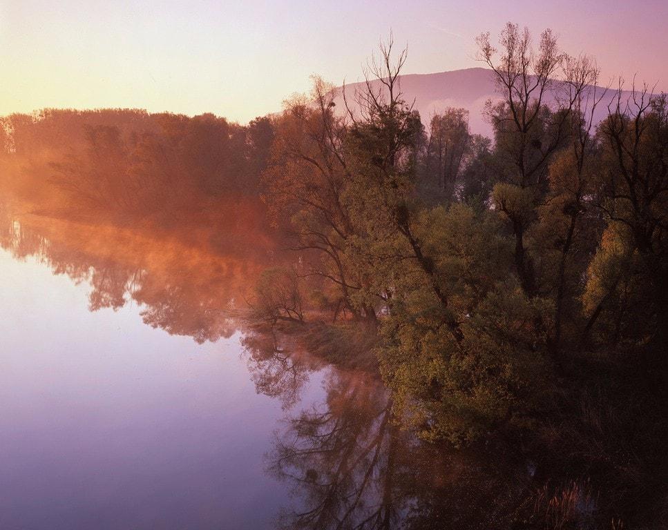 رود دانوب | وین