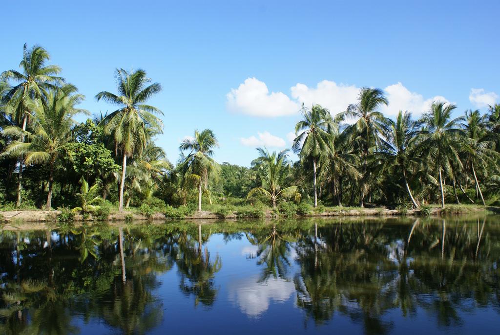 جزیره پولو ابین سنگاپور