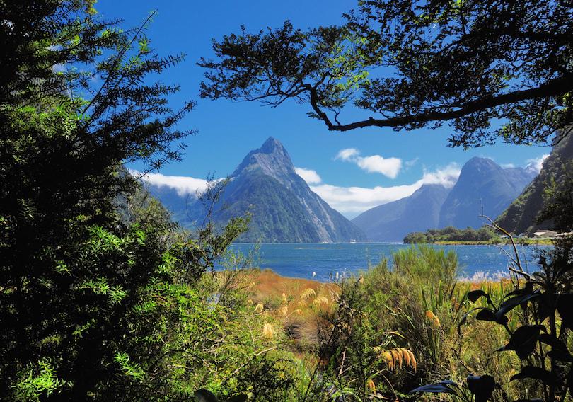 بهترین کارهایی که می توانید در نیوزیلند انجام دهید