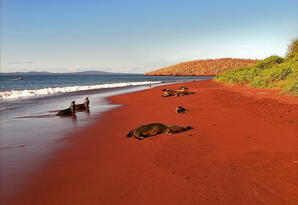 جزیره رابیدا در اکوادور | ساحل شنی قرمز