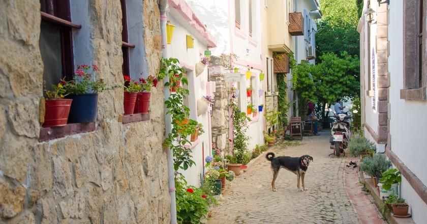 سفر رمانتیک به ترکیه