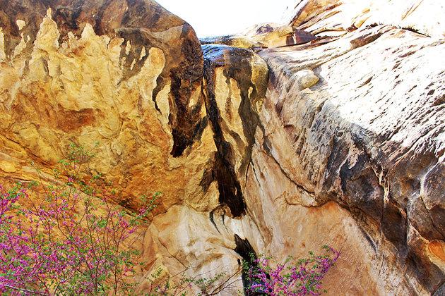 صخره قرمز کانیون