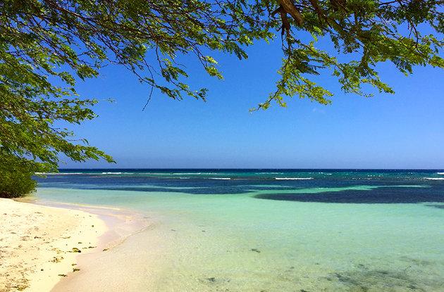 ساحل برتر و زیبا