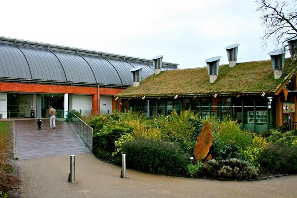 «موزهی هورنیمان» (Horniman Museum)