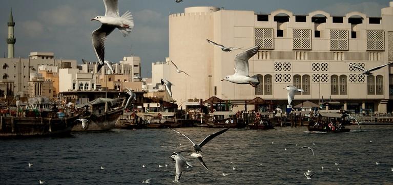 اعمال ممنوعه در امارات متحده عربی