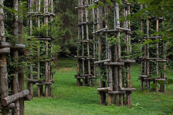 کلیسای جامع درختی