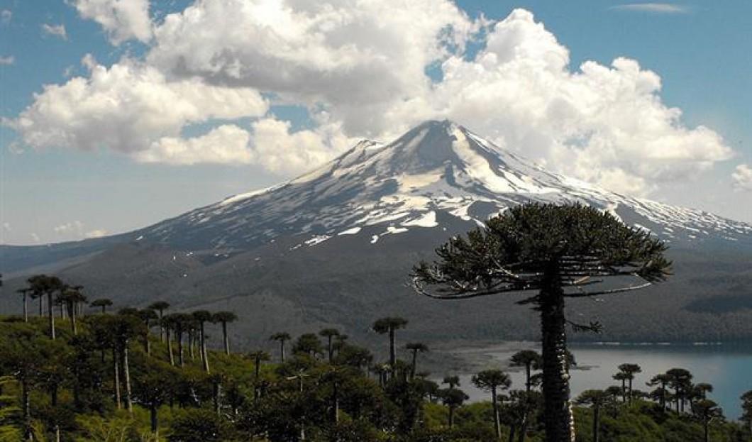 پارک ملی کونگویو | شیلی