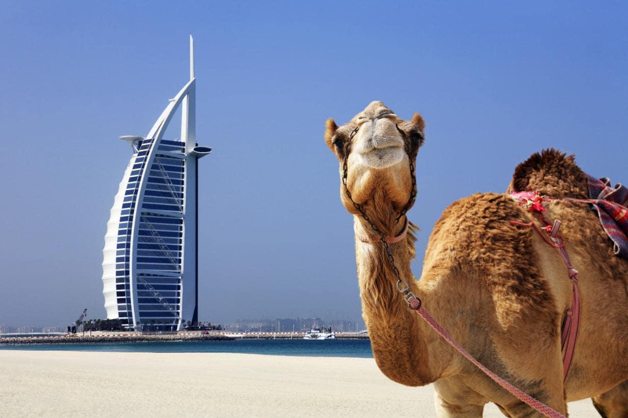 دبی بهترین جای کره زمین است