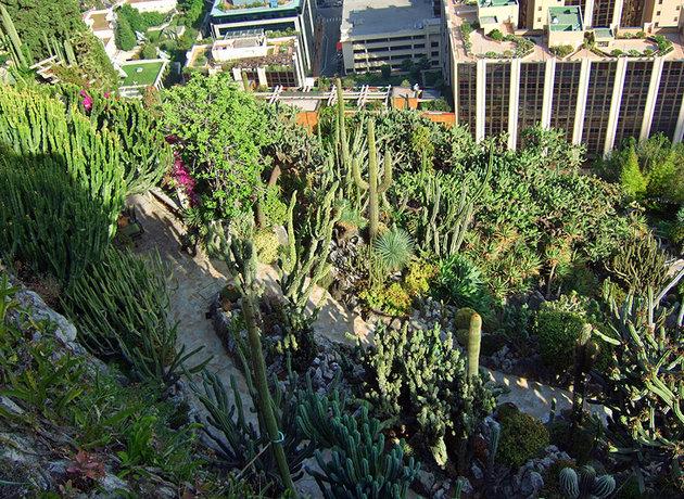 باغ اگزوتیک موناکو