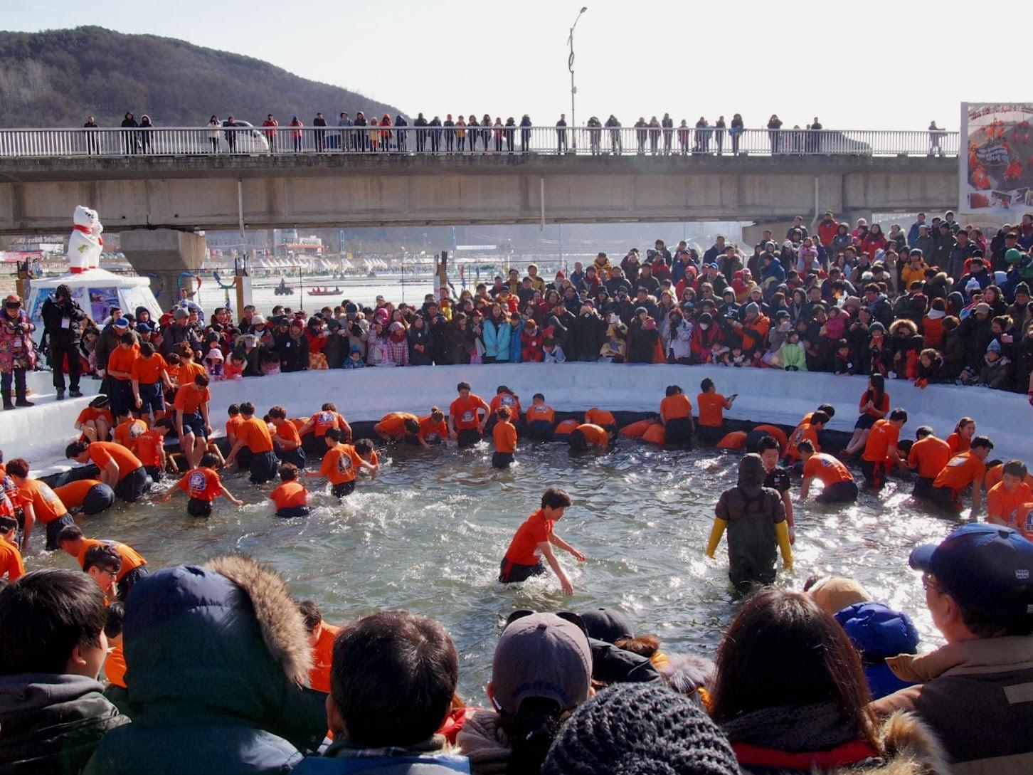 سفر به کره جنوبی - فستیوال