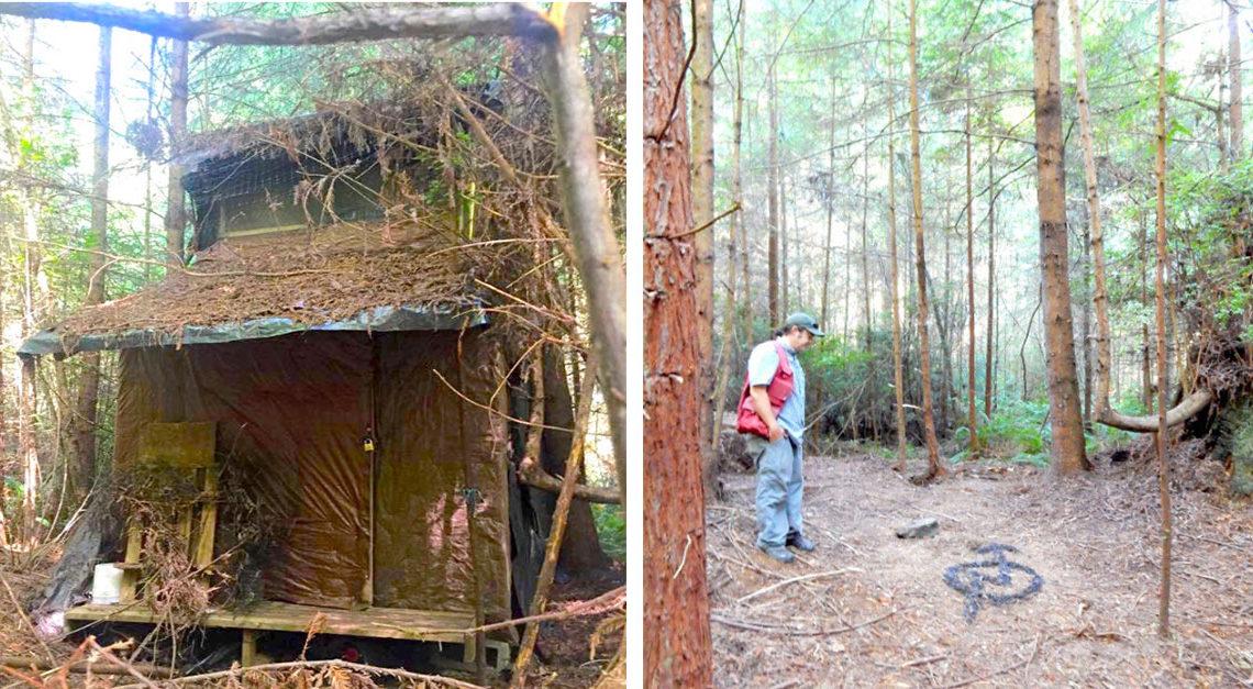 اتاقک مخفی در جنگل