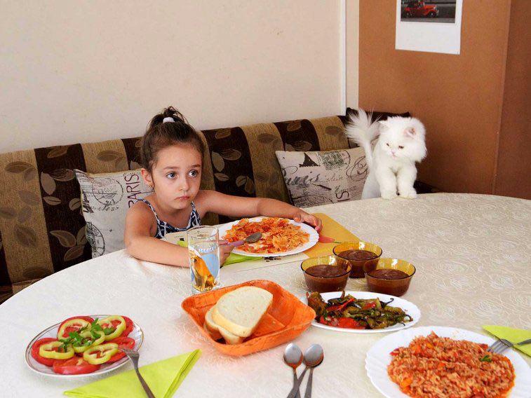 آشپزخانه در بلغارستان
