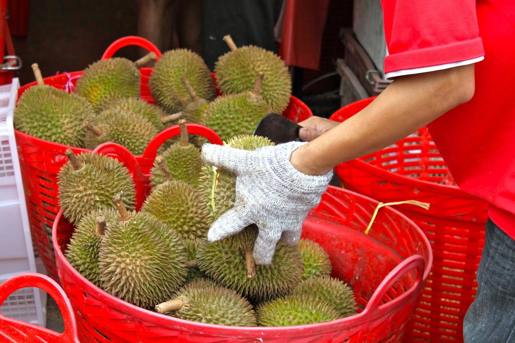 میوه خارگیل