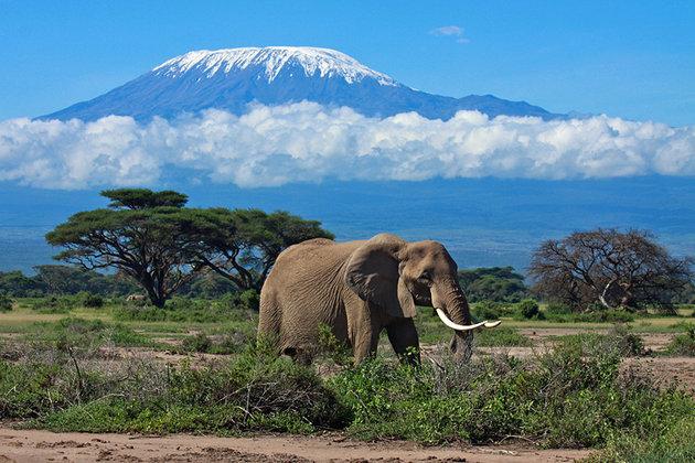 بهترین مناطق طبیعی آفریقا