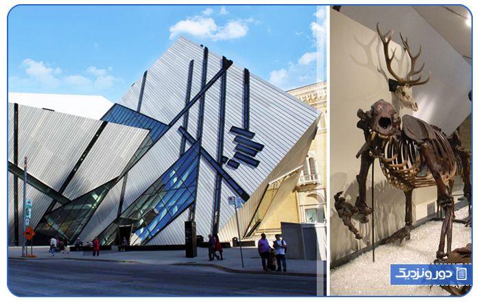چرا موزه انتاریو از بهترین جاذبه های تورنتو محسوب می شود