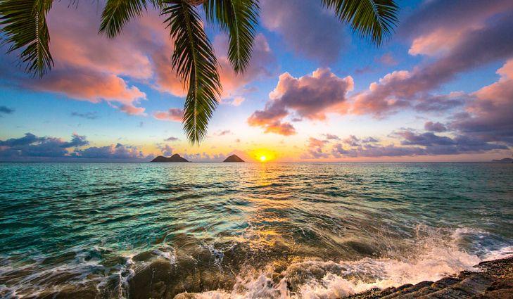 بهترین زمان سفر به هاوایی | فروش آنلاین بلیط هواپیما به مقصد هاوایی