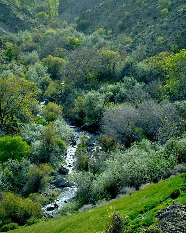 روستای دهبکری از جمله جذاب ترین مکان های تفریحی بم