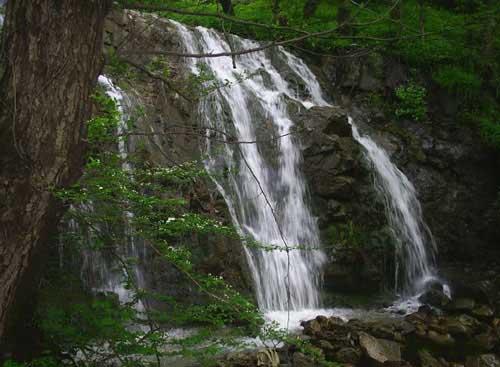 آبشار شارشار از مکان های دیدنی زنجان