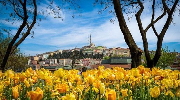 بهار بی نظیرترین فصل ترکیه