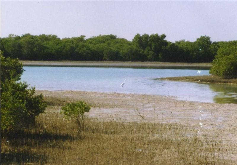 پارک ملی نایبند یکی از مکان های دیدنی عسلویه