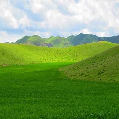منطقه عزیز آباد