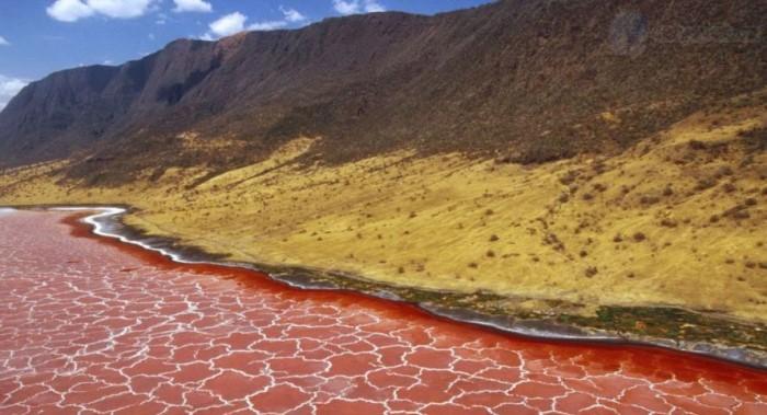 دریاچه ناترون از مکان های عجیب دنیا
