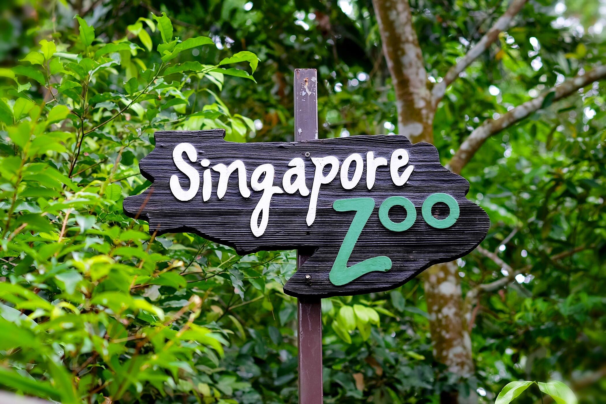 جاذبه های طبیعی سنگاپور