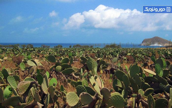 زیباترین سواحل اندلسساحل زاهارا دلاس آتونس (کادیز)