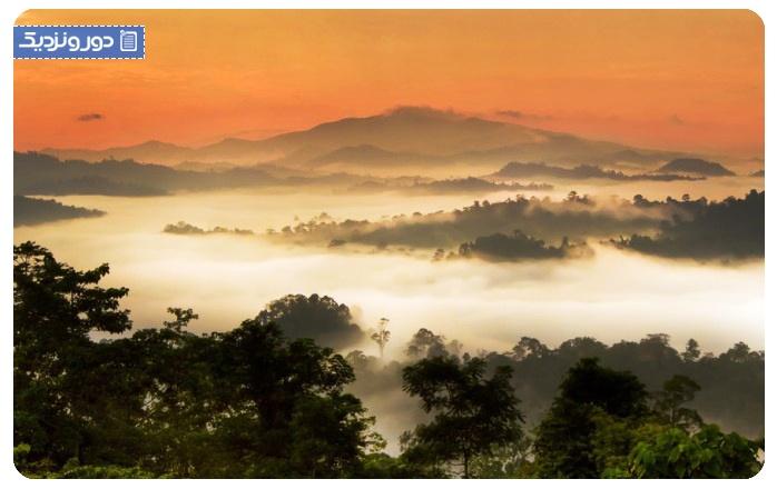 گردشگری مالزی دره دانوم در صباح