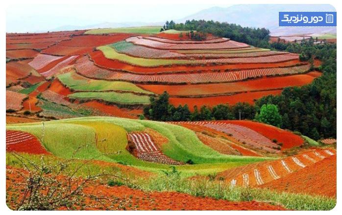 کارهایی-که-می-توانید-در-فصل-پاییز-در-چین---داخلی-۱