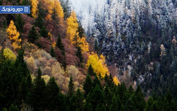 کارهایی-که-می-توانید-در-فصل-پاییز-در-چین-گردشگران بین المللی