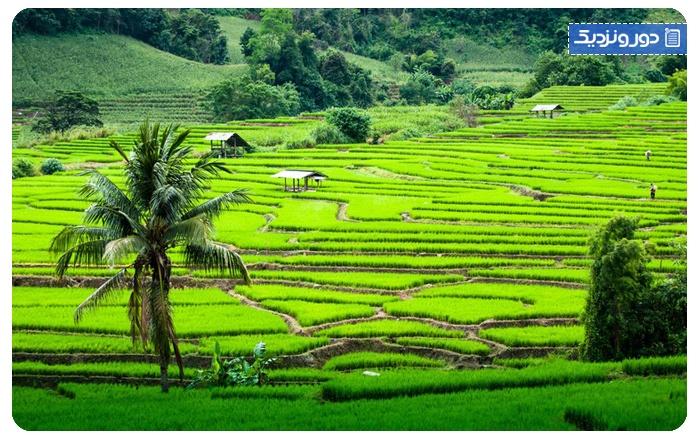چیانگ مای در تایلند