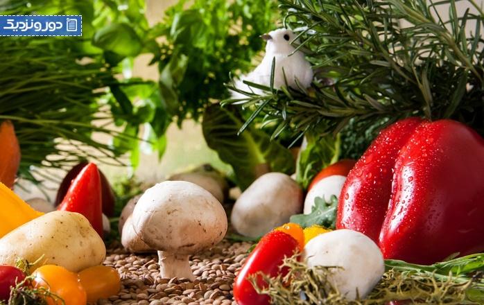 غذاهای گیاهی غذای فنلاندی