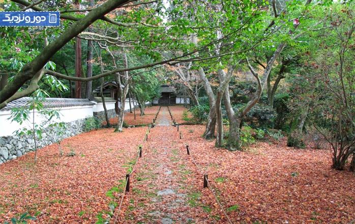 زیباترین باغهای ژاپنی سنتی در کیوتو