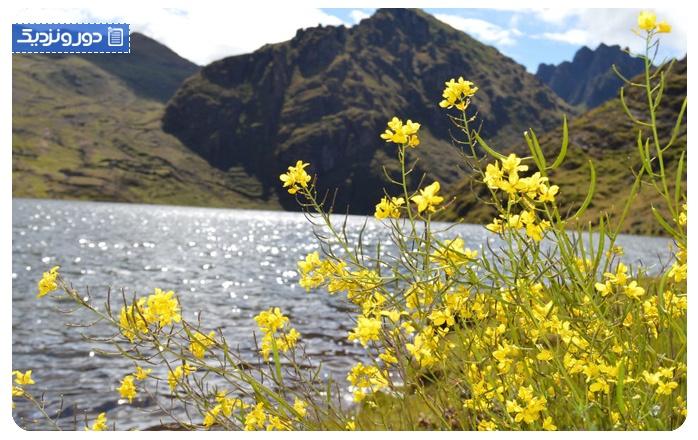 زیباترین کشورها در فصل بهار