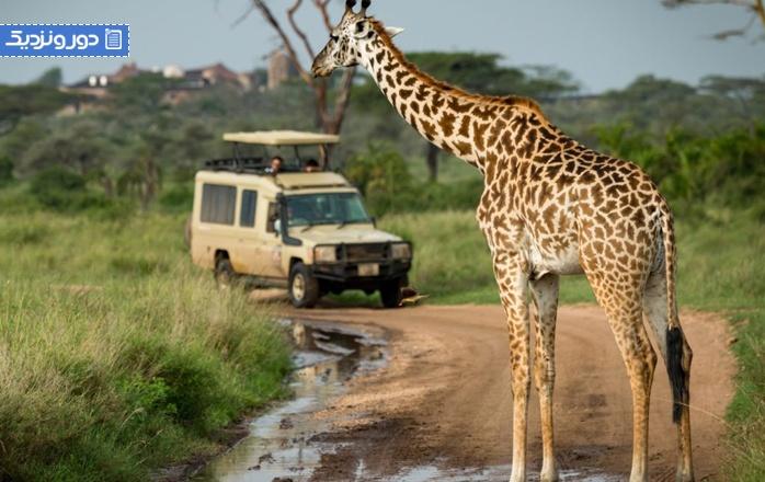 تصورات اشتباه درباره سفر به آفریقای جنوبی چیست؟