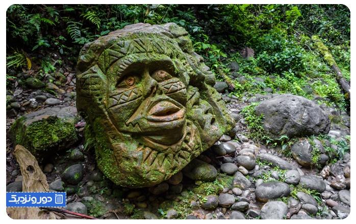 جنگلهای آمازون AMAZON