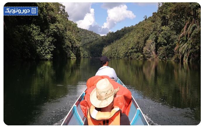کسب آمادگی و انتخاب وسایل لازم برای سفر به جنگل