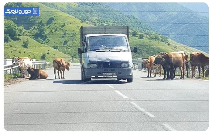 ملزومات سفر زمینی به گرجستان