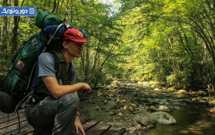 سفر به جنگل