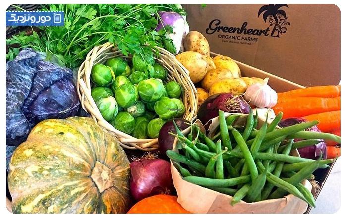 فروشگاه گیاهخواران دبی